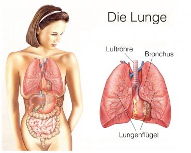 Wiederkehrender Brustkrebs in den Lungen